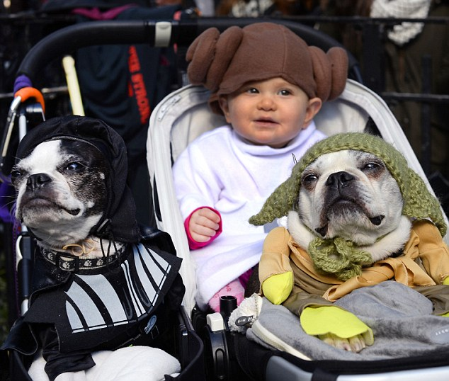 Dogs and baby dressed as characters from
