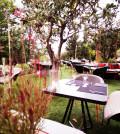 garden_warm