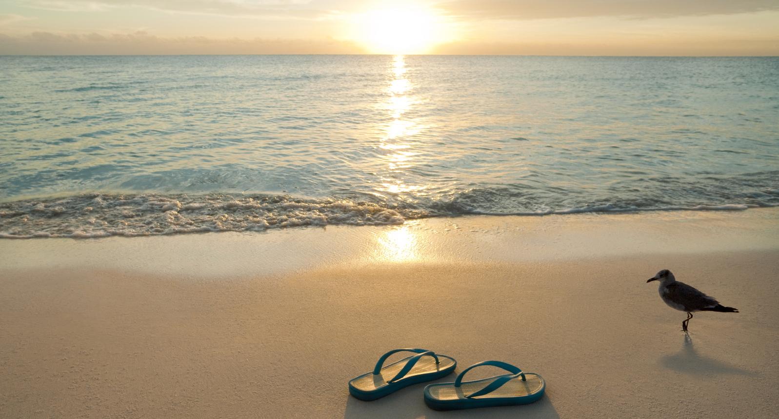 Sunrise on flip-flops and bird on the beach.
