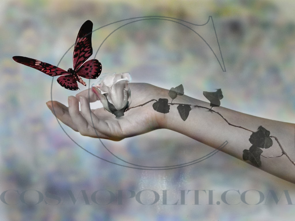 butterfly_hand_red_fantasy_flower_wings_hd-wallpaper-311794