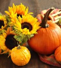 food-pumpkin-sunflowers-cloth-wood-harvest-1600x1200