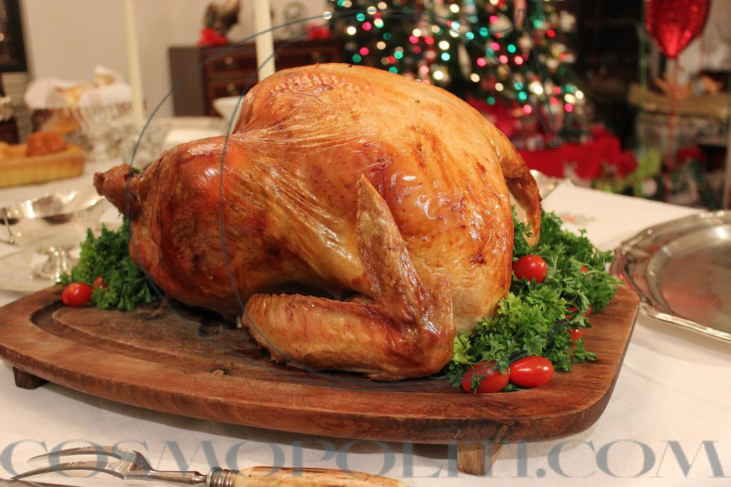 christmas_turkey-570