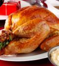 poultry-roast_turkey