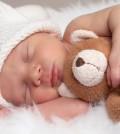 teddy_bear_baby_sleeping_wallpaper(www.CoolWallpapers.org)-1920x1200