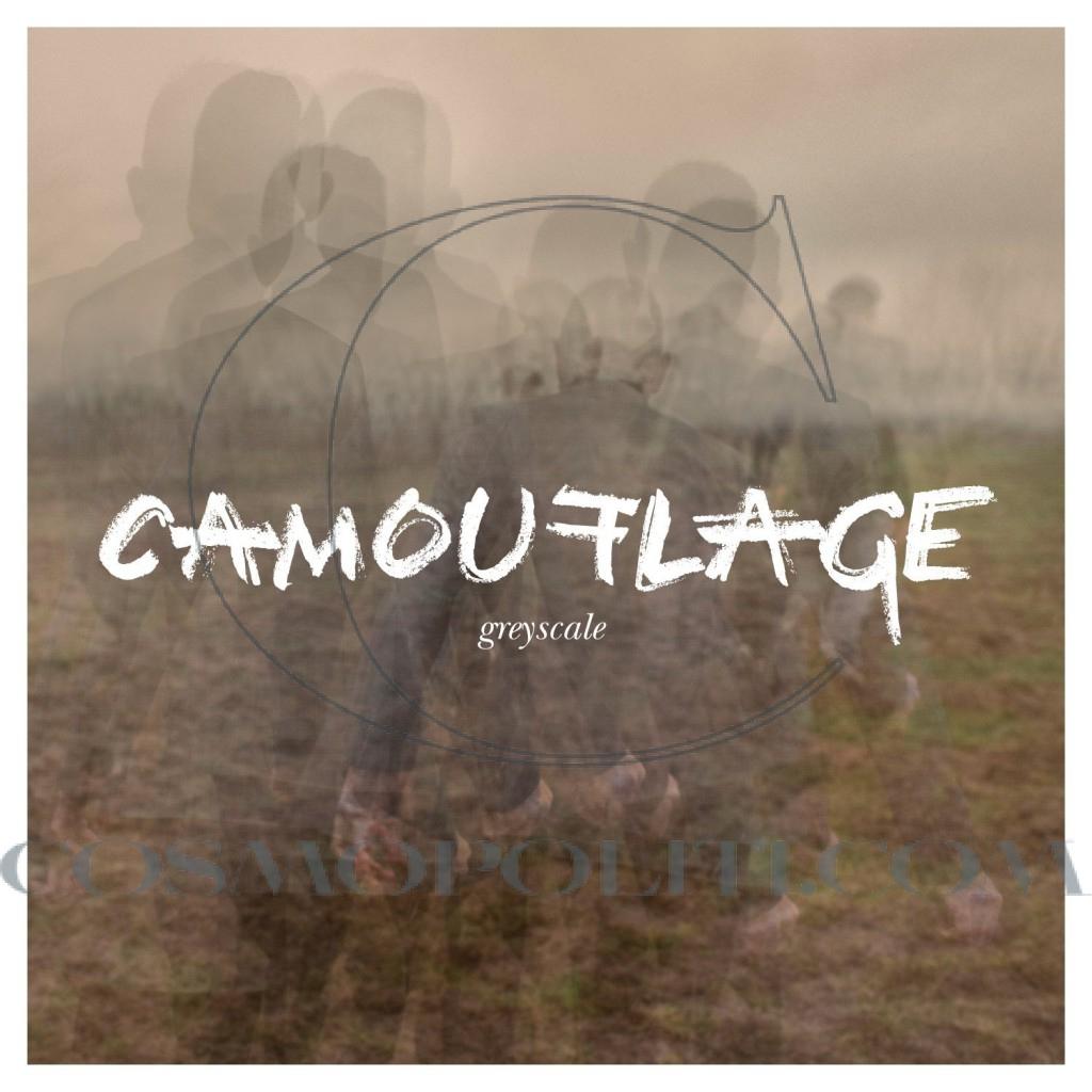 2.Camouflage – Greyscale