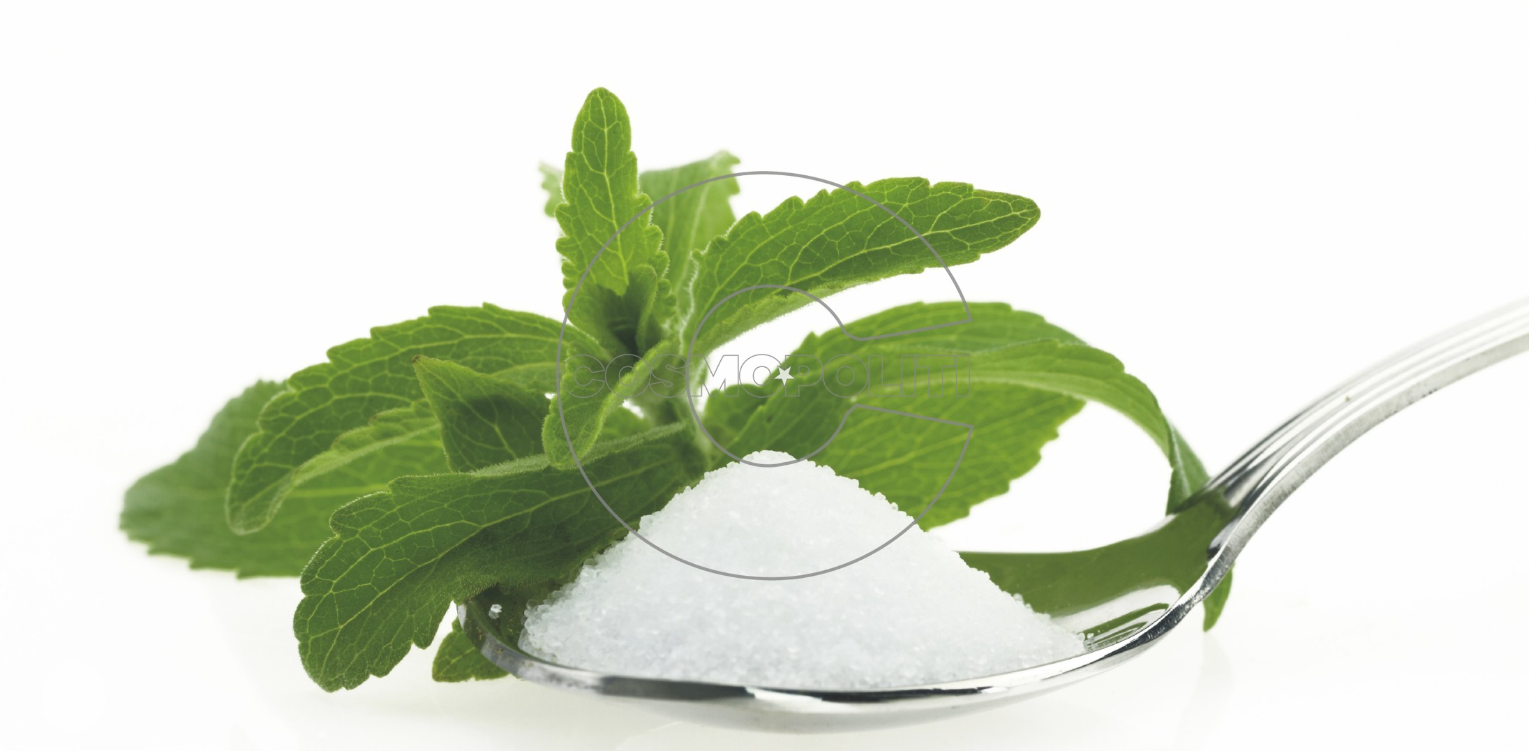 1585-stevia