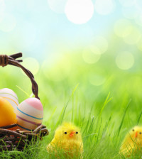 Happy-Easter-happy-easter-all-my-fans-36926203-1280-800