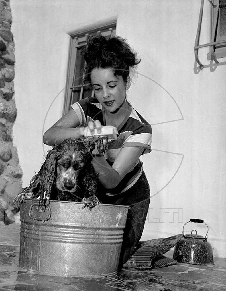 Interesting Vintage Photos of Classic Movie Stars Spending Time With Their Pets (17)