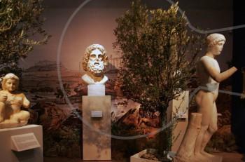 Ο αυτοκράτορας Αδριανός στο Μουσείο της Ακρόπολης
