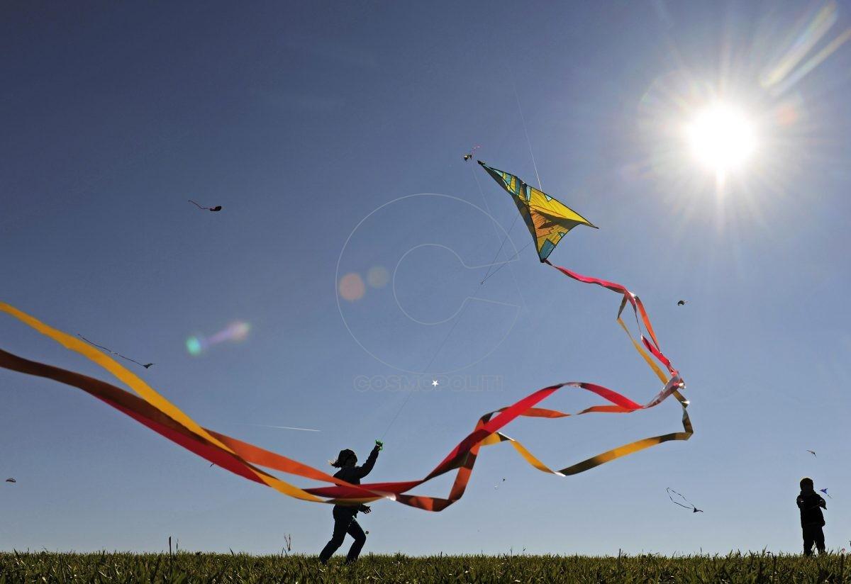 Kite-e1488011689983