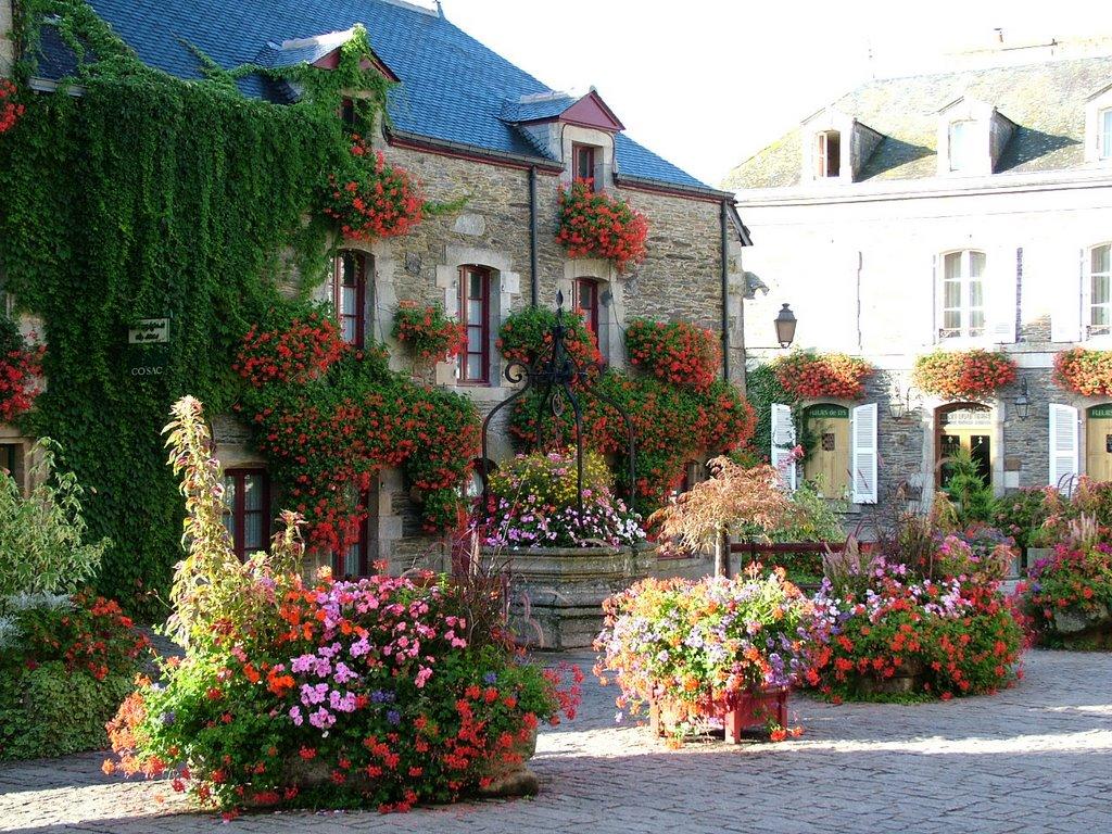rochefort-fleuri
