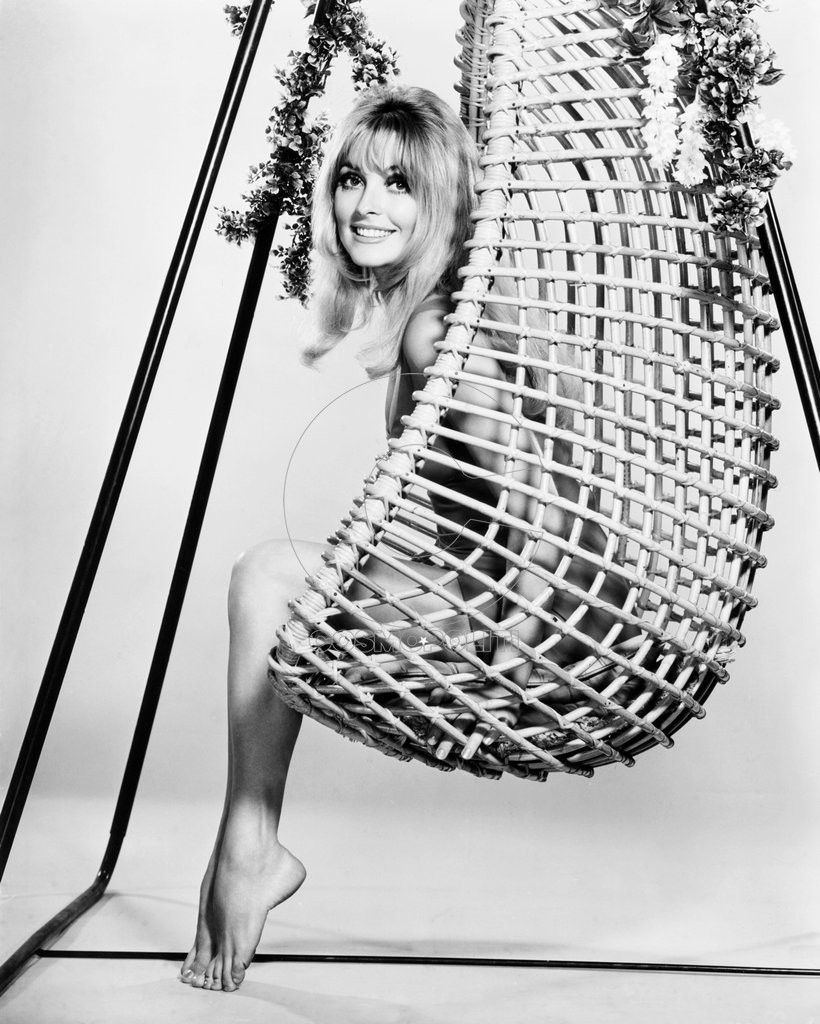 Sharon-Tate-Pictures