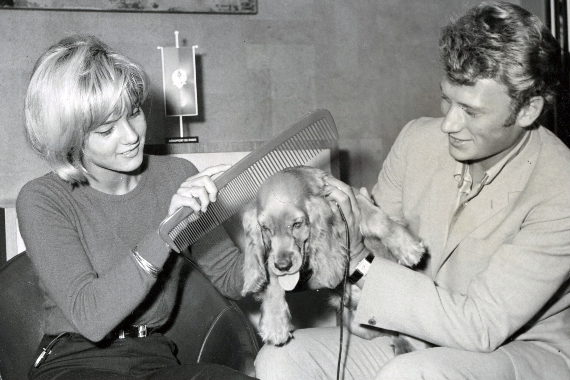 ARCHIVES  - Oct 16, 1971 - Paris, France - SYLVIE VARTAN and JOHNNY HALLYDAY with their cocker spaniel at Orly Airport after they arrived from the US.  |