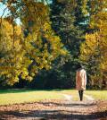 woman-walking-in-a-park-in-autumn-picjumbo-com