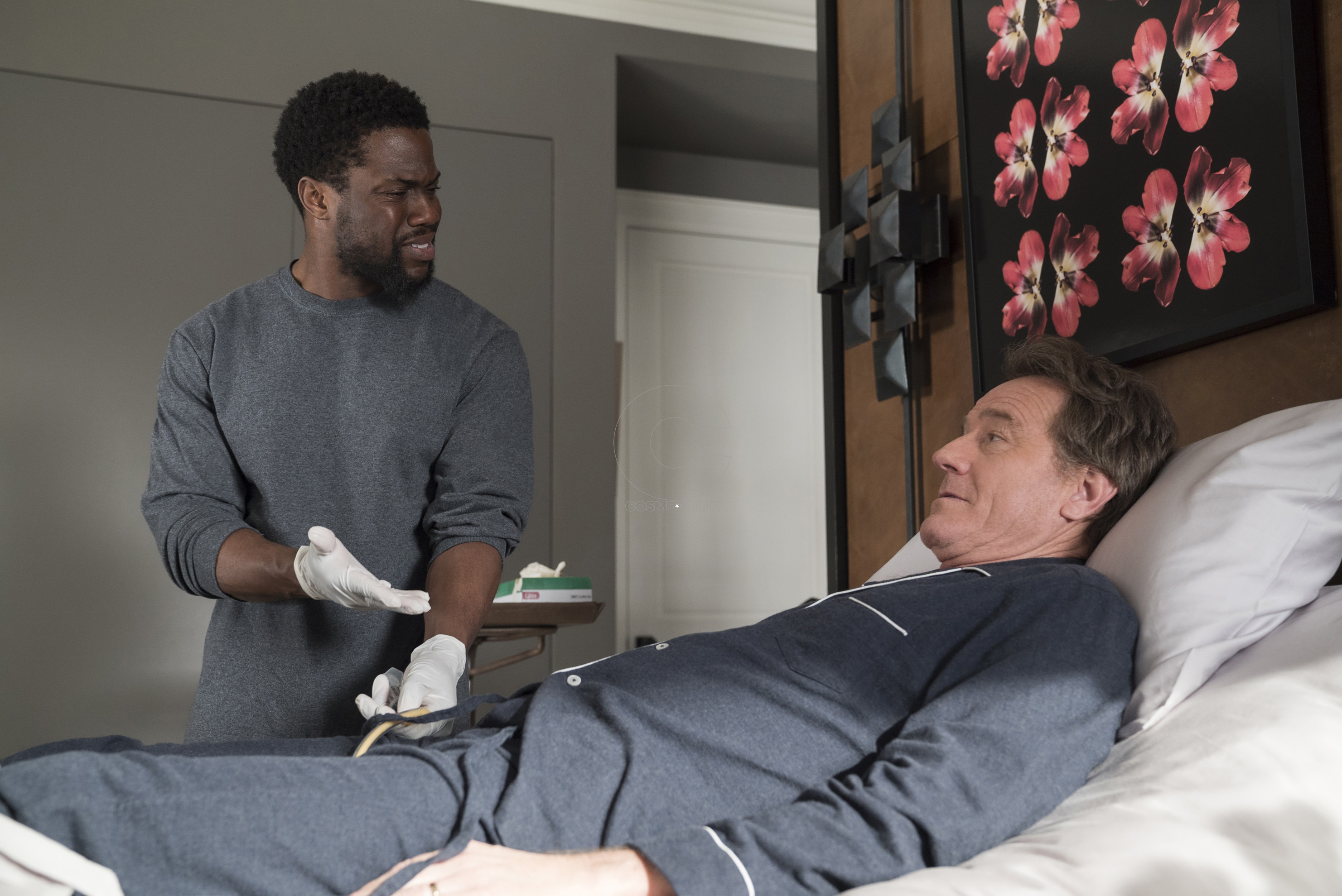 Kevin Hart and Bryan Cranston star in THE UPSIDE David Lee/Photographer
