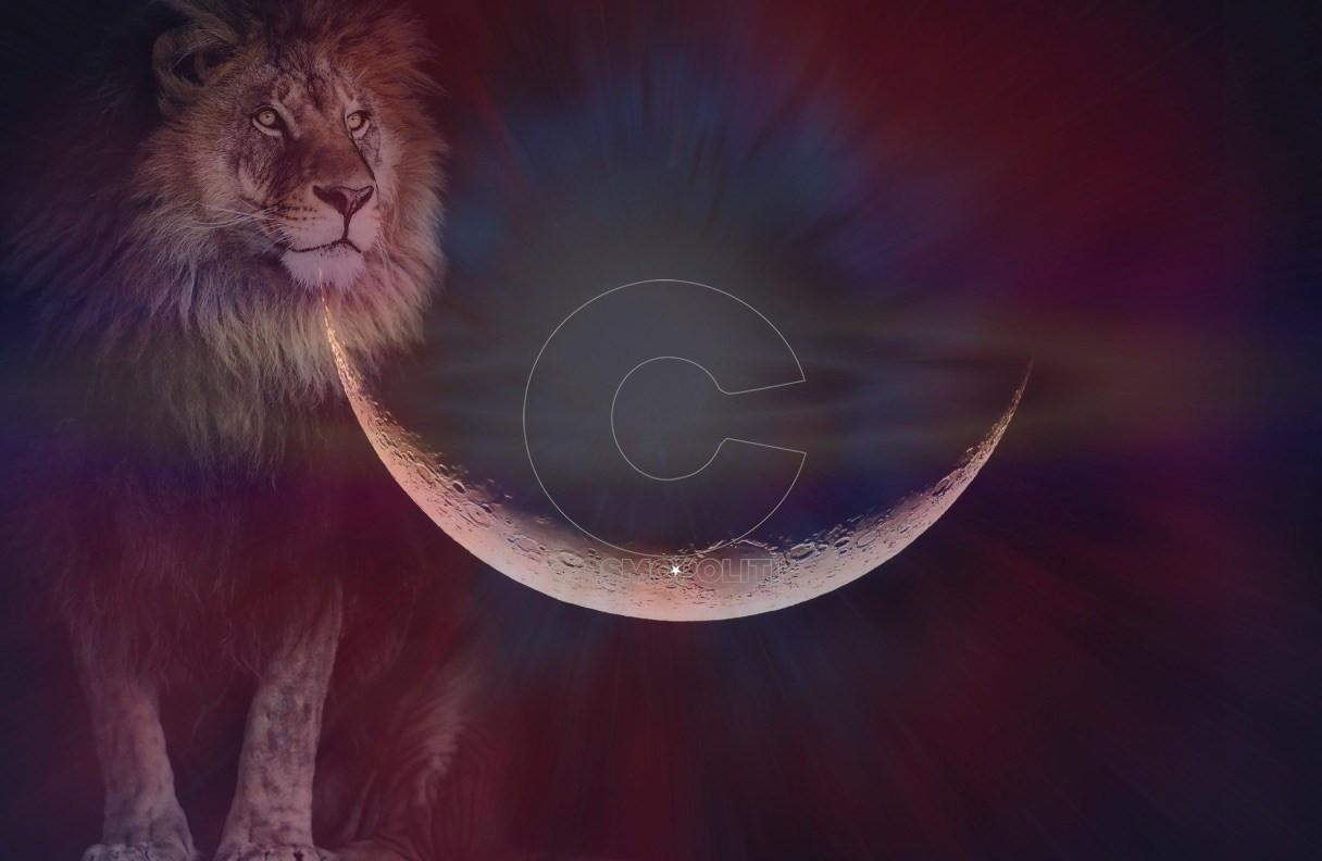 leo-new-moon-ritual-2019