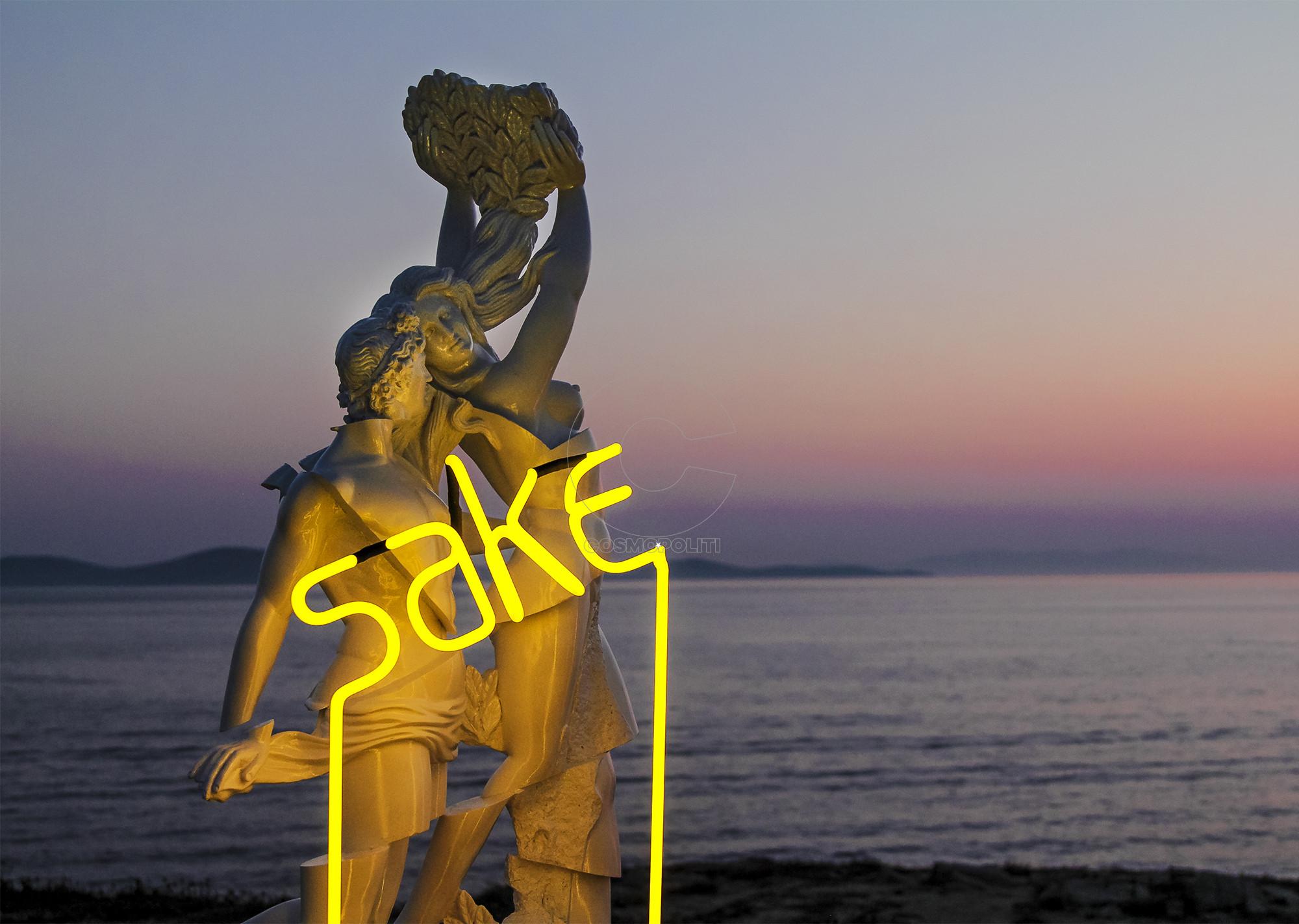 SAKE STC