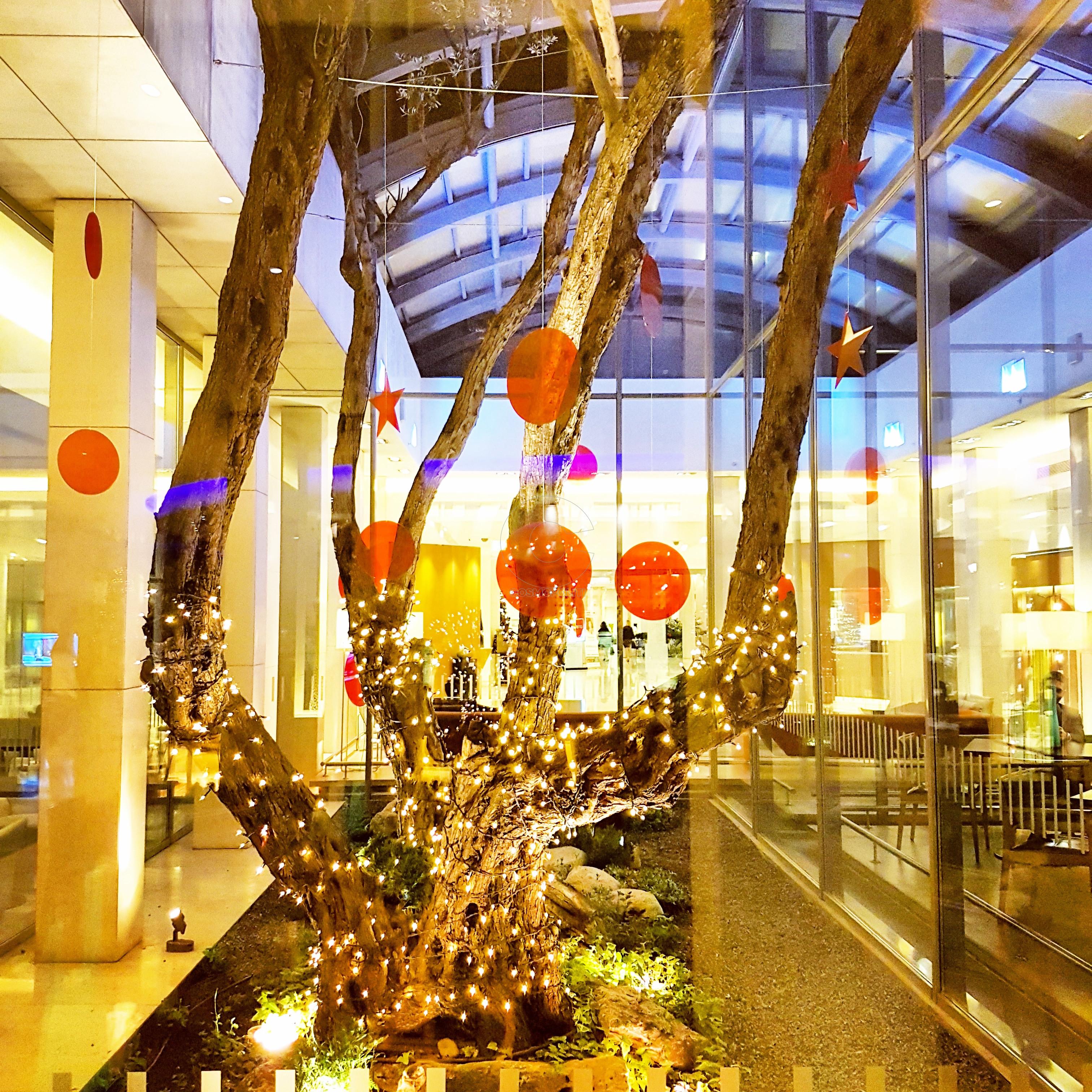 Hilton Athens Christmas (21)