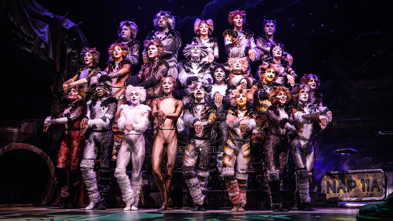 the_north_american_tour_company_of_cats._photo_by_matthew_murphy._2019-h_2019