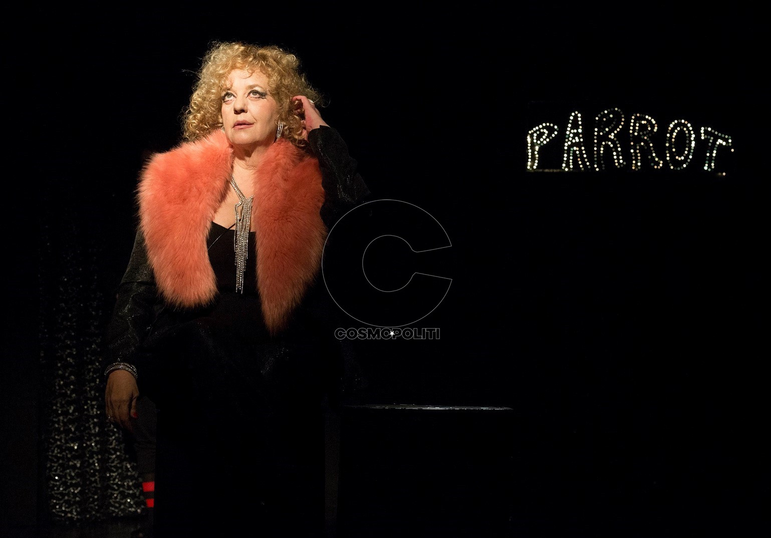 02 Parrot Parrot_Θέατρο Παραμυθίας