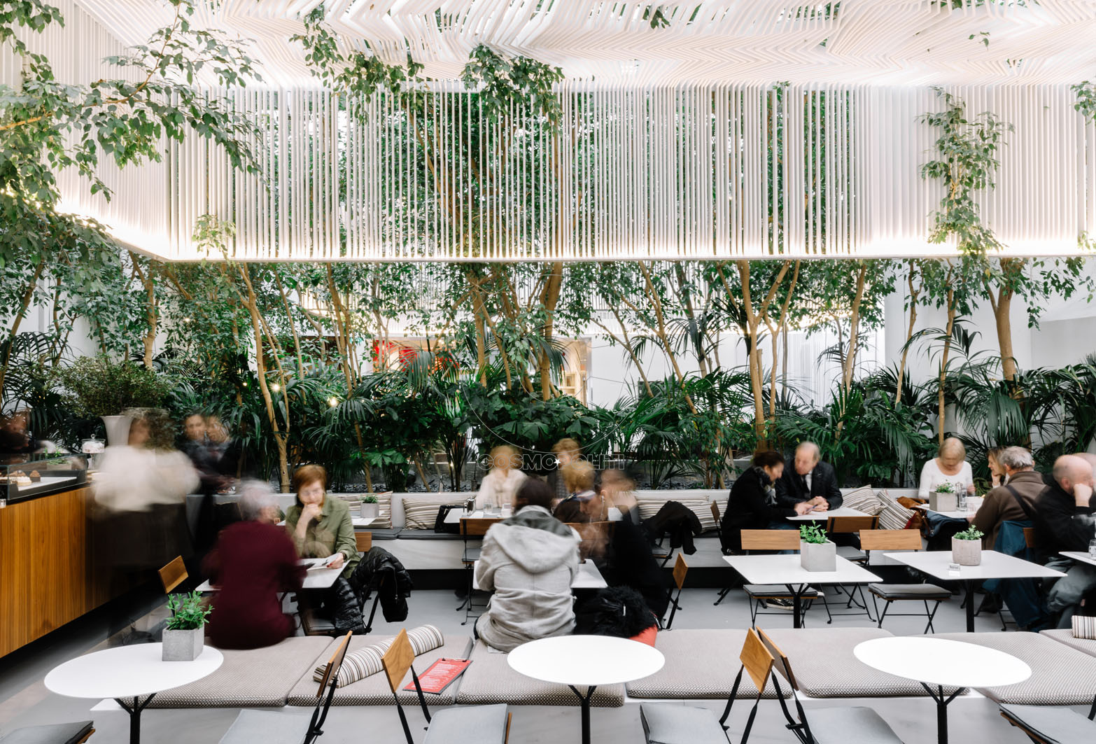 Cycladic Cafe1 © Paris Tavitian, Museum of Cycladic Art, 2020