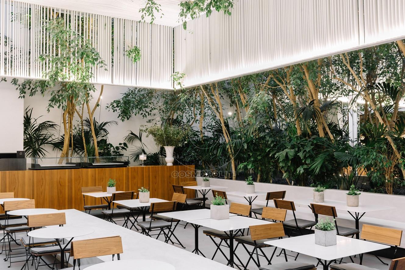 Cycladic Cafe8 Paris Tavitian Museum of Cycladic Art