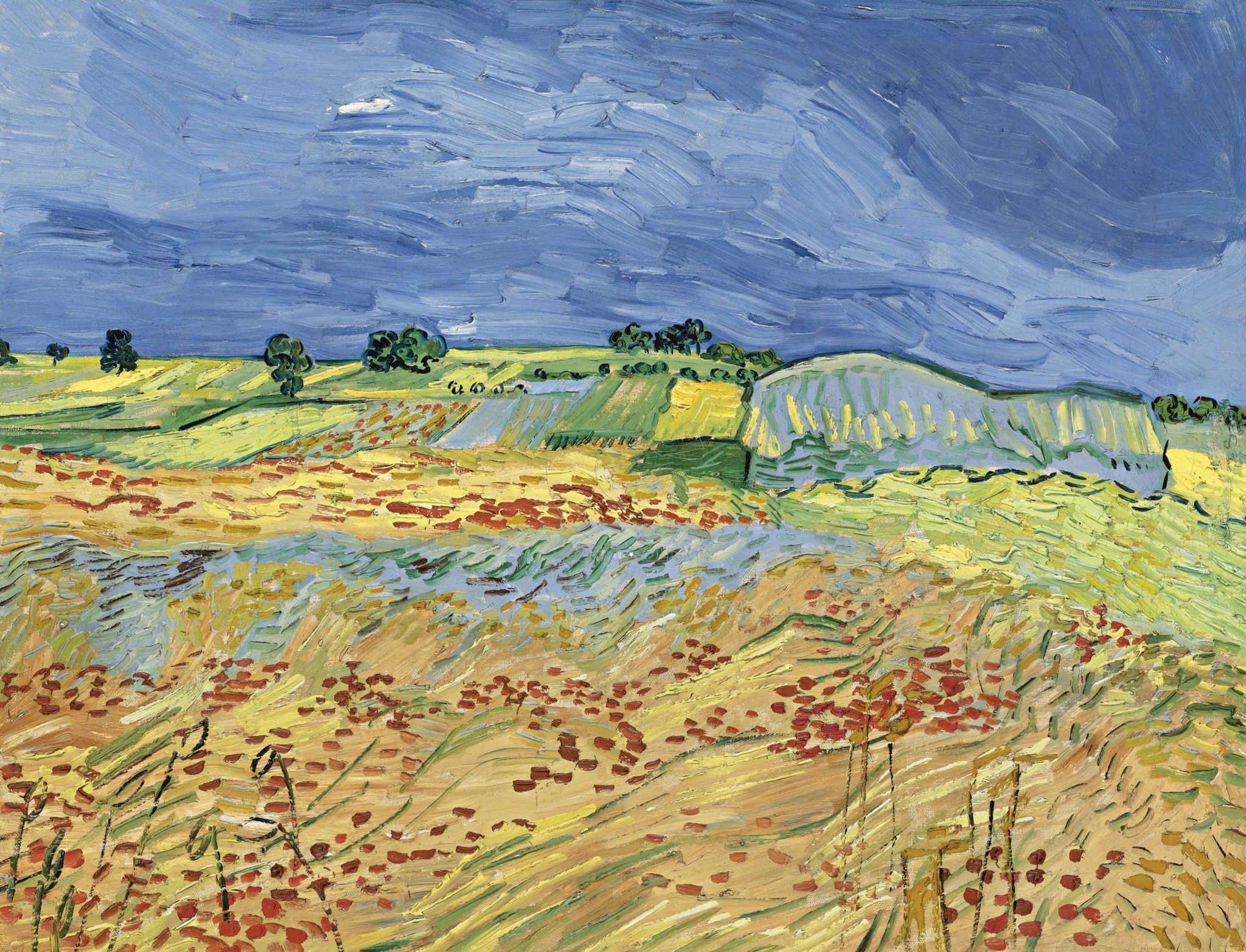 Vincent_van_Gogh_-_The_Fields_(1890)