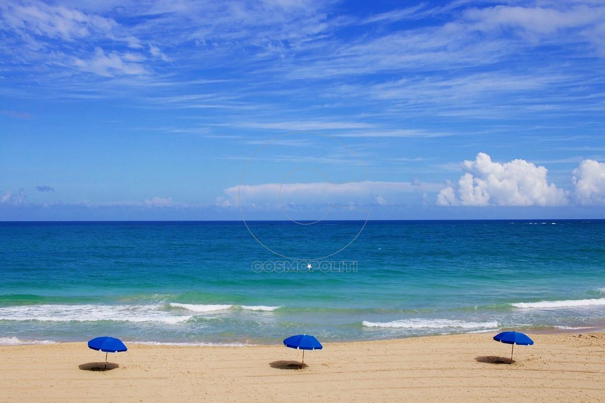 beach-1209229_1920