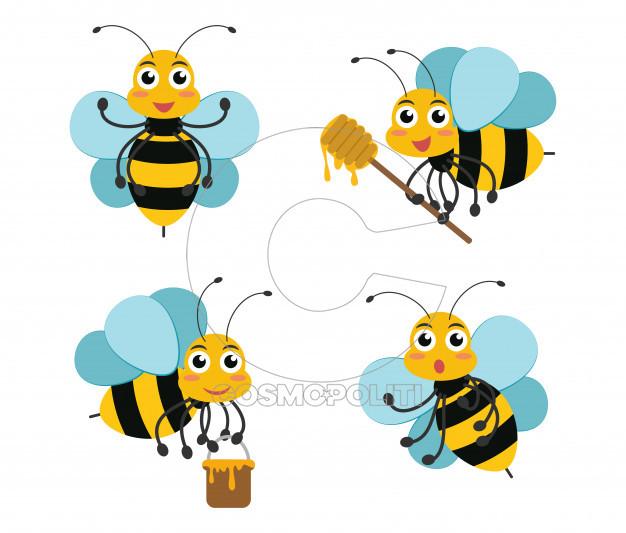 bee 15